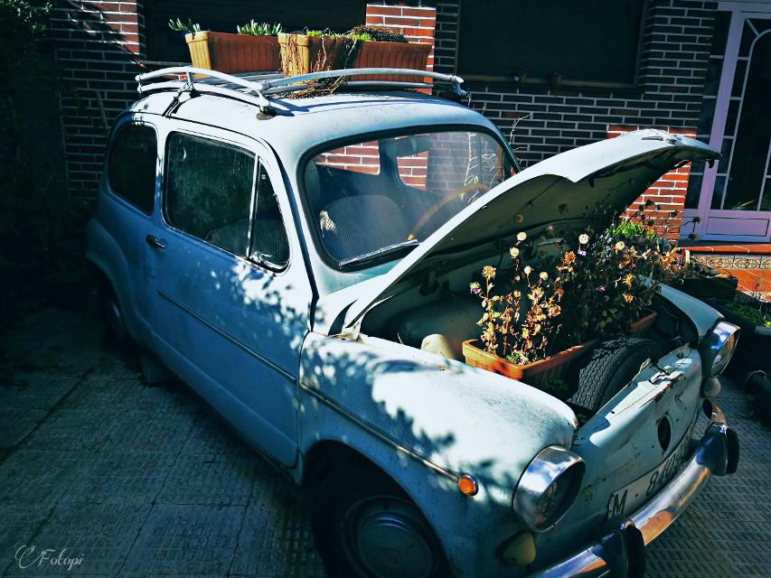 #madrid #spain #car #old #plants #flowers #flowerpot #garden #blue #huawei
