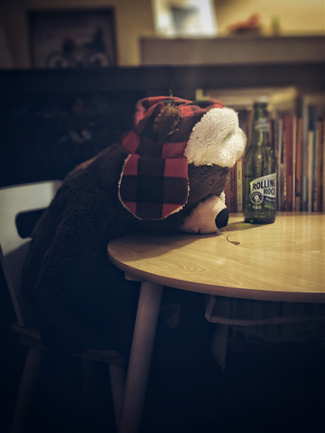 #longday #toys #beer #board #photography #bear #christmas hang over #rollingrock