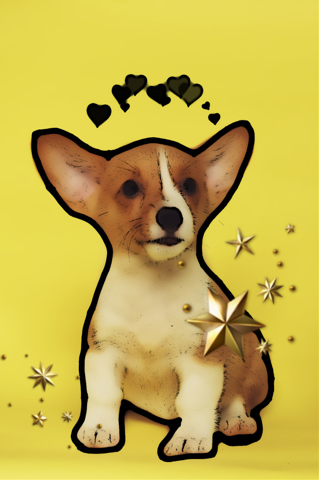 #freetoedit #puppy #cute #fanartofkai #edited #voteforme