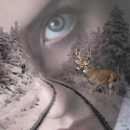 freetoedit doubleexposure railroadtrack buck womanportrait