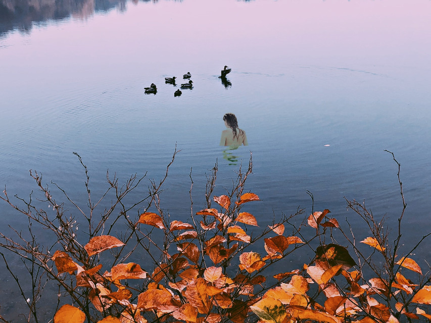 Thank you for 1k likes! 💖Instagram: @margo34277 #freetoedit #girl #swim #day #water #birds #autumn #hojas #natural
