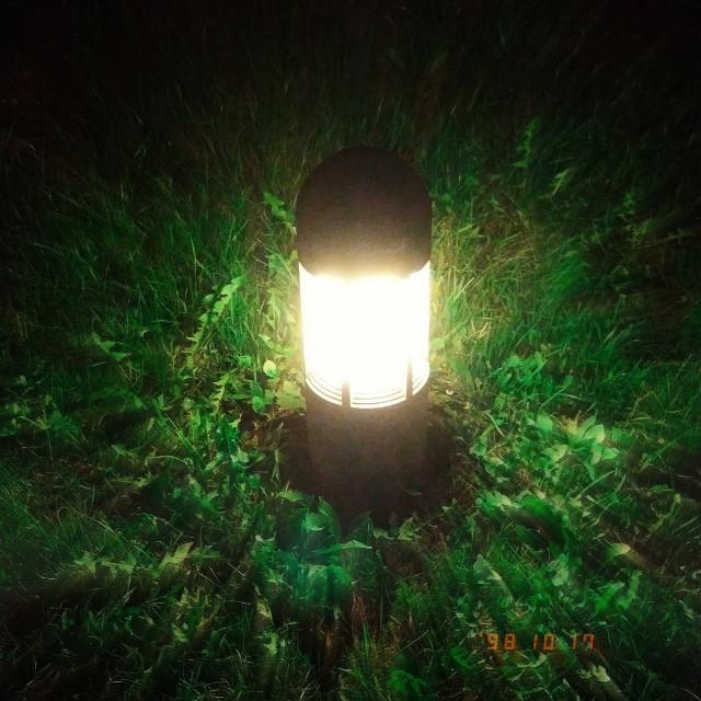 #light  #freetoedit #night #dark #inthedark #inthedarkness #gece #ışık #photo #photography #photographer #green #blur