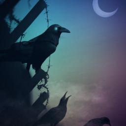 vipshoutout madewithpicsart silhouette gradientcolors edited darkart