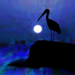 freetoedit blue night glitchbrush artisticedit