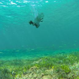 freetoedit underwater challenge sea