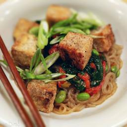 tofu stirfry vegan vegetarian lamadedis