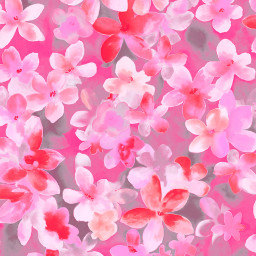 freetoedit wallpaper background backgrounds floralpattern