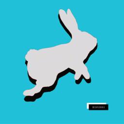 freetoedit rabbit bunny hare shadow