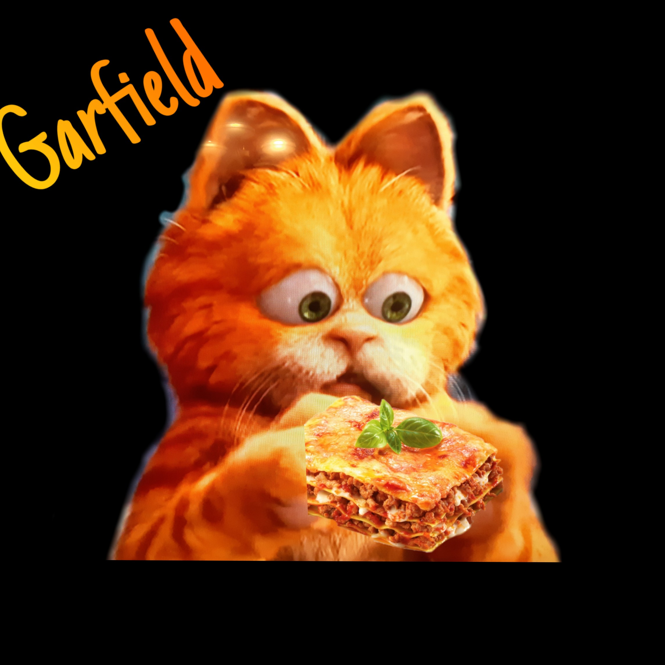 Garfield Lasagna Cat Image By Carrot Junior