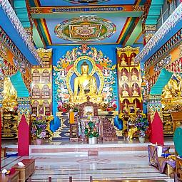 freetoedit buddha buddhatemple temple religious pcreligiousceremony