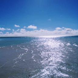 beach millennialfltr naturephotography freetoedit