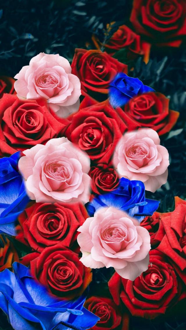 #freetoedit widziałam roze u kogos innego i mial bardzo duzo serduszek... a ja ile bede miala? Moge liczyć na 10 serduszes #rose #flowers #nature