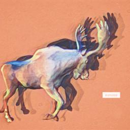 freetoedit moose waveeffect noiseeffect pastelmagic