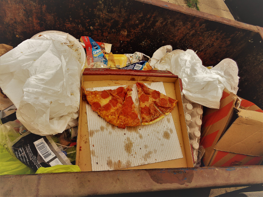 Trashed pizza #freetoedit