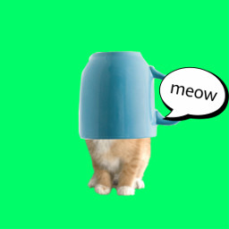 freetoedit kittenplay