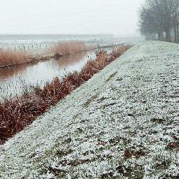 winter cold snowy photography myphoto freetoedit