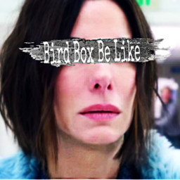 freetoedit birdbox sandrabullock srcpinkbrush pinkbrush