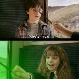 harrypotter harrypotterforever avadakedavra hermionegranger meeting