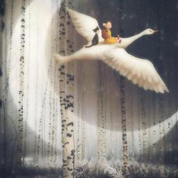 freetoedit picsarttools picsarteffects fantasy dreamy