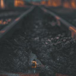 freetoedit girl woman railway nature