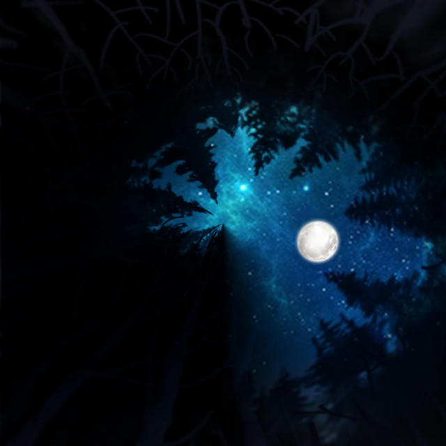 #freetoedit #trees #moon #tinyplaneteffect using picsart #backgrounds #madewithpicsart