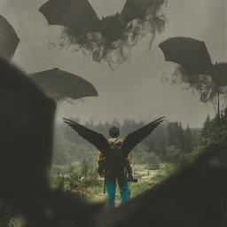 freetoedit wings sky fly flying