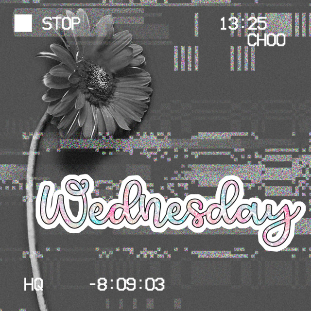 Good day ❤️ Have a beautiful day. Already half a week ❤️ I hope you continue with all the positive attitude. And continue, and keep creating ❤️.  Good vibes for everyone who reads this, from Mexico 🇲🇽.  #freetoedit #flower #flowers #hearts #wednesday #wednesdaywishes #wednesdaymotivation #wednesdaymorning #holographic #blackandwhite #maskeffect
