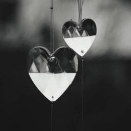 freetoedit blackandwhite heartshape pcheartsisee heartsisee heart