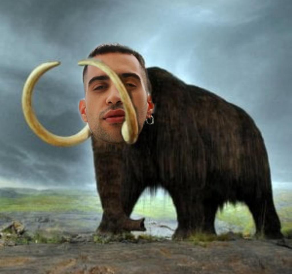 #Mammut