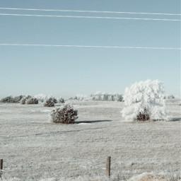 freetoedit free winterscape winterwonderland wanderlust
