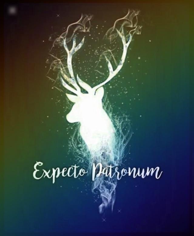 #Harry #Potter #Harrypotterfan #Harrypotterart #Hermione #Ron #Harrypotter #expectopatronum #Harrypotter3 #germany #bremen #Niedersachsen #PicsArt