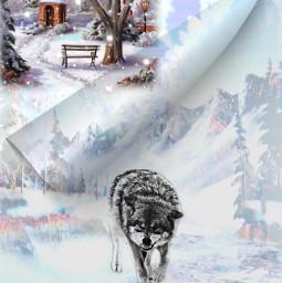 freetoedit winterscenes snow village wolf