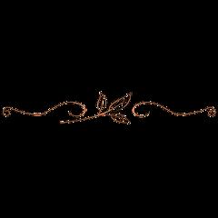 bronze bronce decoration decoración line