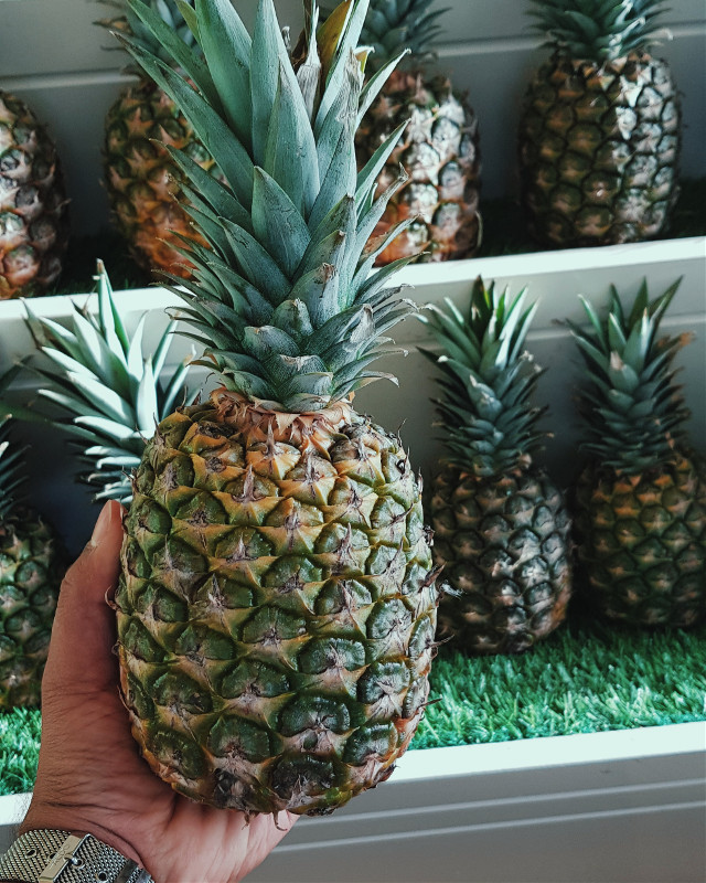 Be a pineapple: Stand tall, wear a crown, and be sweet on the inside #pineapple  #yummy #eat #foodporn #stuffed #beautiful #lunch #love #sweet #delicious #foodpic #foodpics #hungry #foodgasm #amazing  #photooftheday #fresh  #love #instagood #me #cute #tbt # #tweegram #picoftheday #igers #freetoedit
