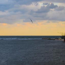 freetoedit rimini italy nature adriaticsea