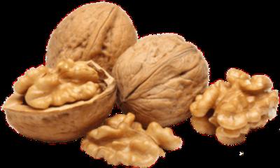 nuts walnut freetoedit
