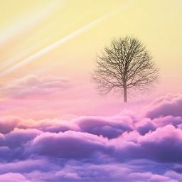 freetoedit quickedit clouds maskeffect rainbowlightmask irclonelytree