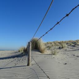 freetoedit beach pcstripes dunes bobwire