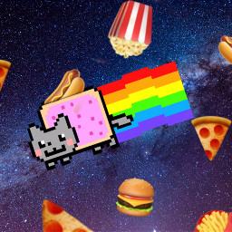 freetoedit cat space nyancat rainbow ircpurplegalaxy