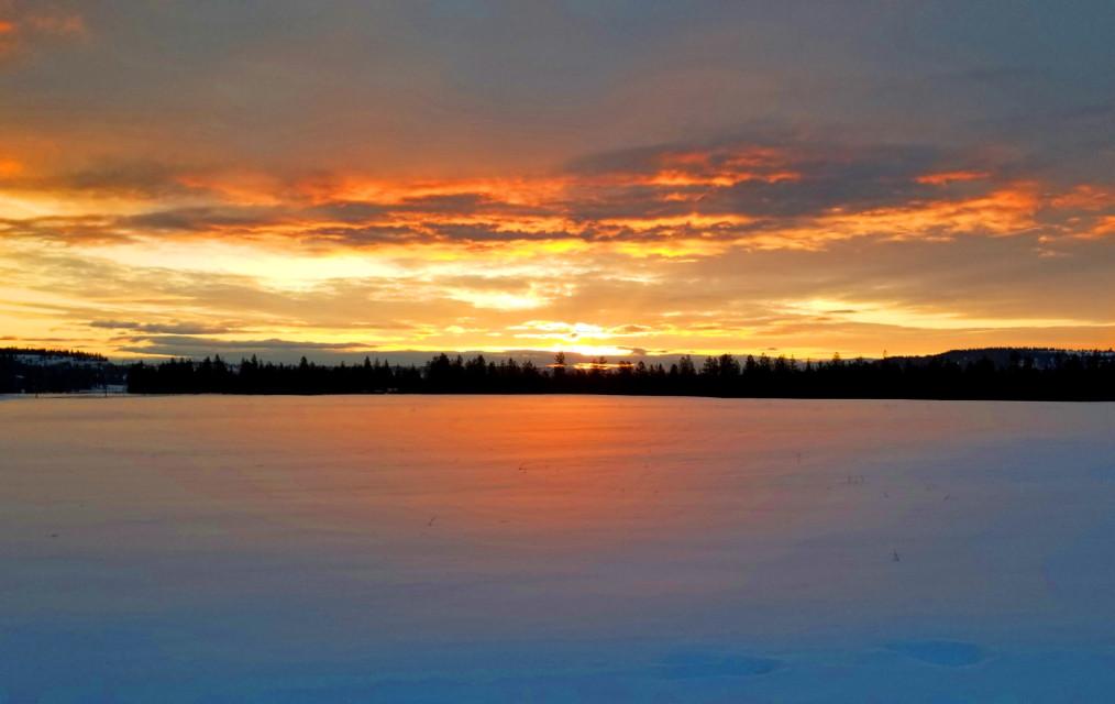 #freetoedit #sunrise #nature #trees #mountainview  #snow