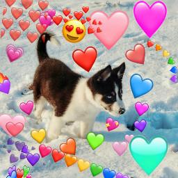 doggos dogs cute heartemojis freetoedit