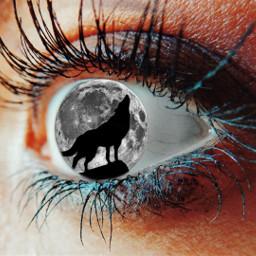 freetoedit eye wolf moon eyeedit