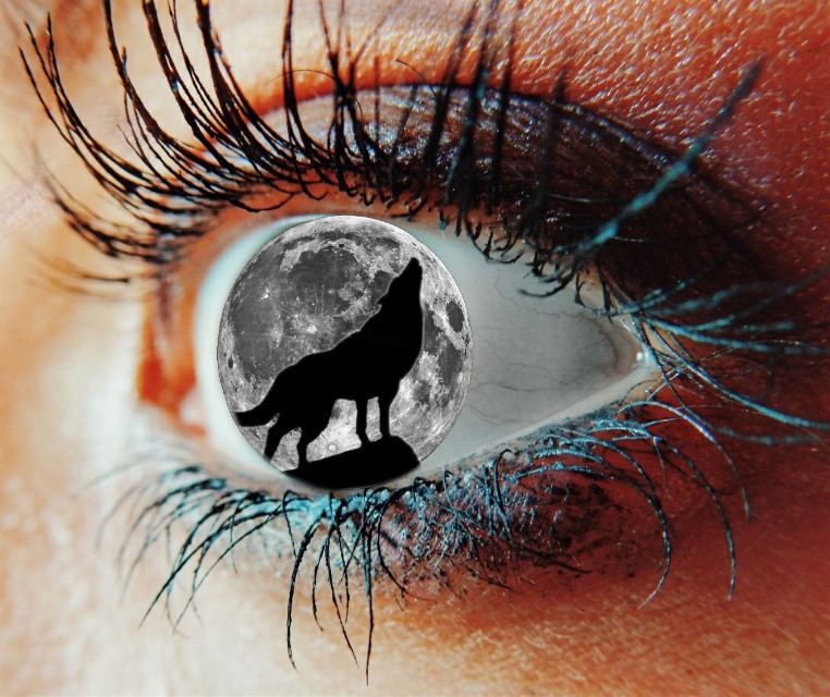 #freetoedit #eye #wolf #moon #eyeedit