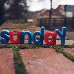 freetoedit sunday lettersfrommyfridge letters