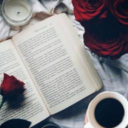 freetoedit bcm booklover roses reading ircmorningcoffee