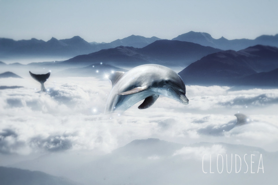 #freetoedit #dolphins #animals #sparkles #dolphin #sky #mountains #swimming #glitter #clouds
