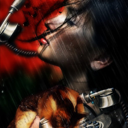 freetoedit telephone cat rain