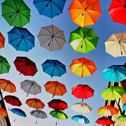 pccolorfestival colorfestival pcumbrellasisee umbrellasisee
