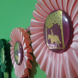 ribbons ribbon horseshow wallart win freetoedit pcwalldecoration