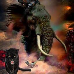 freetoedit srcpanthers panthers